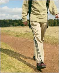Walk - Walk