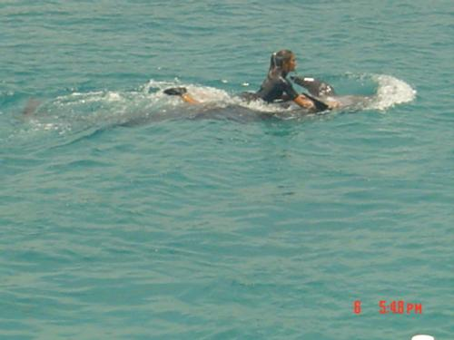 Swimming... - swimming is the best excercise!!