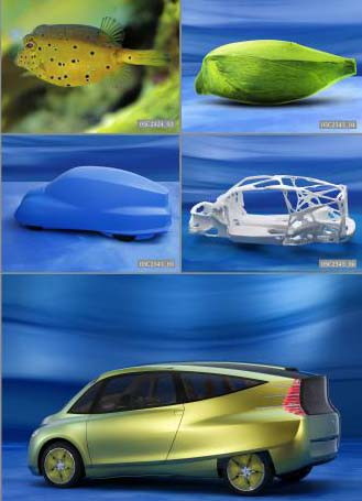 The Mercedes Benz Bionic Car - The luxury division of DaimlerChrysler has begun a study on using bionics in a car as a way to better conserve fuel and the study team looked to nature for the design of the vehicle. What they found was that the boxfish was an excellent example of an aerodynamic animal.