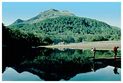 mt apo - these one has taken when were climbing the highest mountain in the Philippines