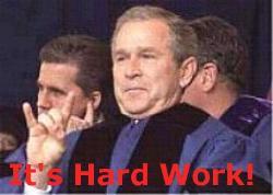 Hard Work, Bush - Bush my buddy my worker! =D