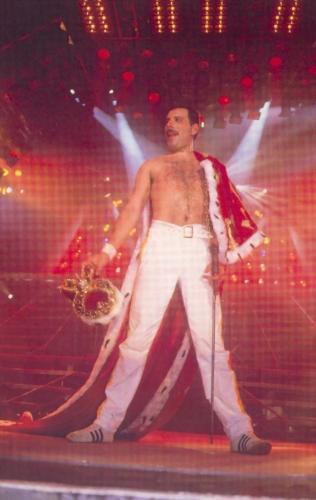 Freddie Mercury - Freddy Mercury