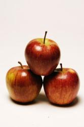 apples - favorite fruit