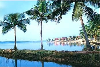 """Kerala """"God own country"""" - Kerala is the best place to travel and to love the nature. It is the best place in India to travel and have a stay and to love the nature and the greenish environment."""