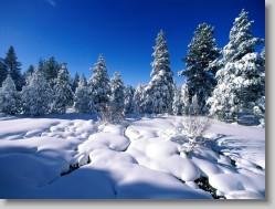snow  - Snows on the High ways