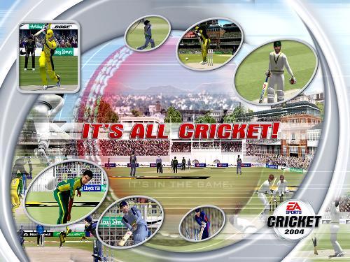 cricket - cricket1