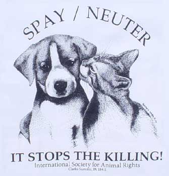 Spay or Neuter - Spay/Neuter...and stop the killing!!!  :)