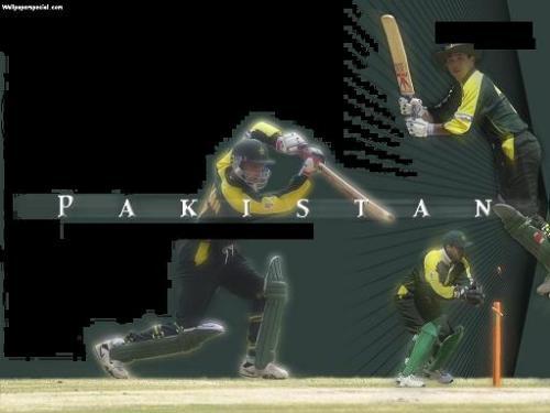 cricket  - cricket pics