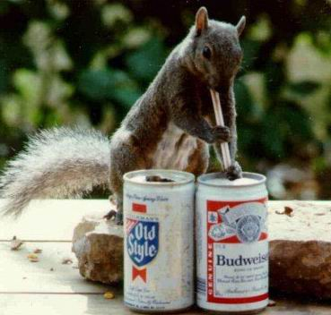 Drinks - .