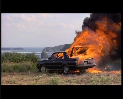 Car gone bad - Black car on fire - it's no longer Fords only option!