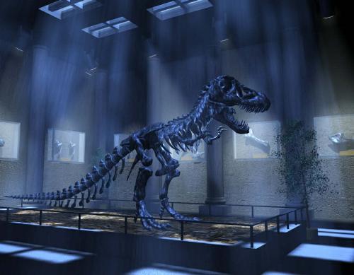 Dinosour - A skull of dinosour