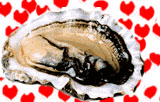 Oyster - an aphrodisiac food