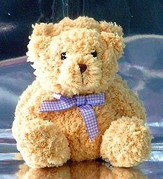 like this bear - this is what teddy bear is.