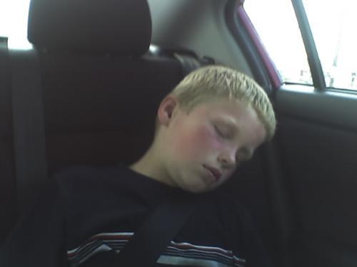 Son asleep in the car - How sweet he looks...