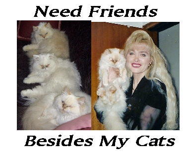 I have alot of cat friends are there any humans ou - This is me and some of my friends.