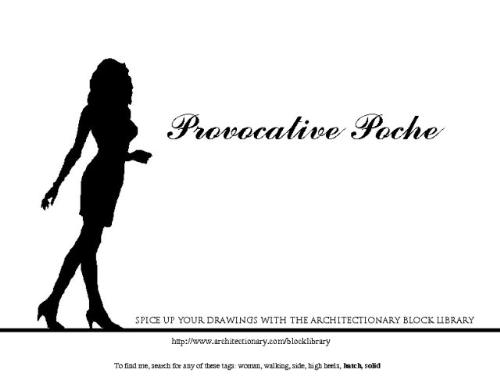 Provocative Poche - The Provocative Poche advertisement for Architectionary.com.