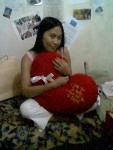 stuffed toys - my girlfriend and the heart-shaped pillow
