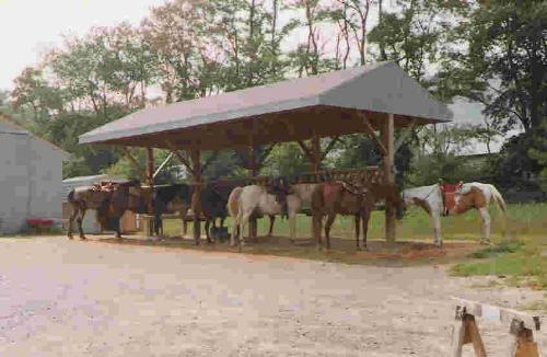 Horses - Here are the horses that me and my parents rode on while we were vacationing in Virginia a few years ago.