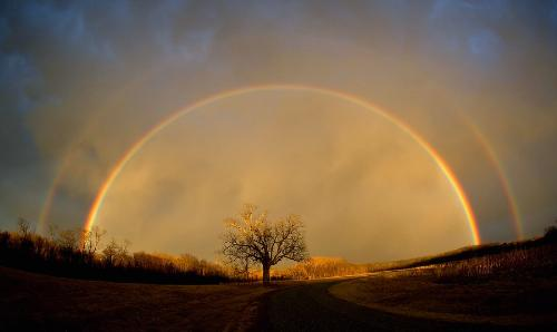 Life Can Be Beautiful  - Don't be afraid that your life will end, be afraid that it will never begin. May a rainbow brighten your day....Mari