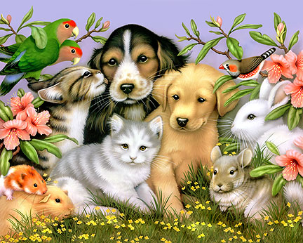 pets - cute image of house pets in flowers and peaceful colors