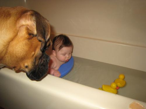 "baby in the tub - Ethan and Lazarus ""duck watching"""
