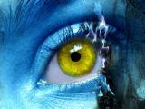 eyes - sight