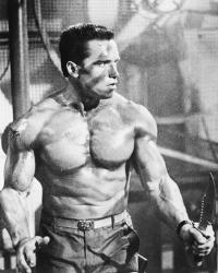 Arnold - arnold