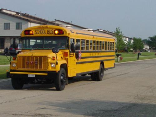 School Bus - School bus