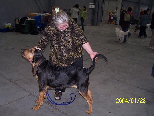 Airis Arimon-Bloodhound - Our Dog Airis on International Exibition in Prague in 2006. She is for us all! We like her very much.