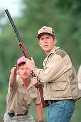 Bush - Bush