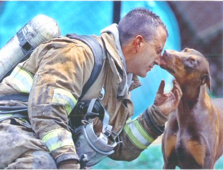 Dobie thanks her savior - after this fireman saved the doberman, she thanked him profusely