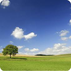 Global Warming - clean skies n clean nature