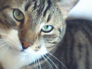 Kasper - My cute birthday boy!