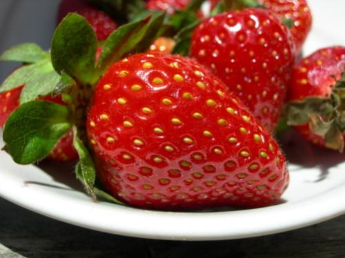 red strawberry - a beautiful red strawberry