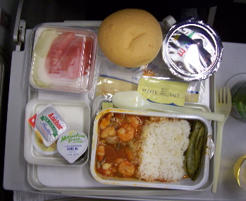 Airplane food - It makes me sick just when I watch it. I've never liked the Airplane food and I don't think I ever will! What do you think? Are the meals good?