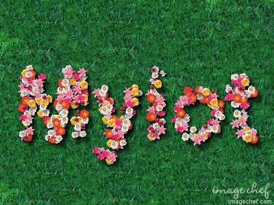 Flower Message Generator - Flower Message Generator to make