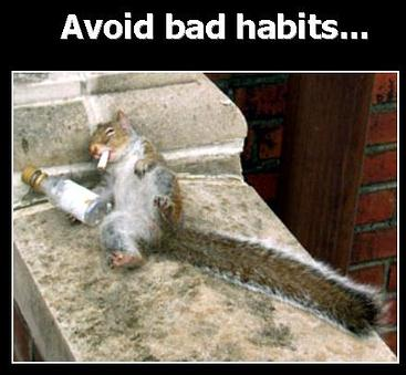 bad habits - do you like this
