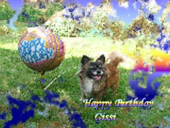 Happy Birthday Gissi - Happy Birthday my little Darling I love you