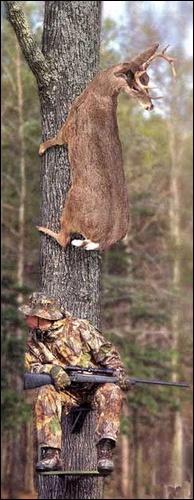 joke - deer hunting at its finest