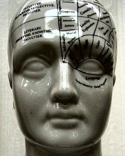 memory being visible within a person's mind. - The memory section in the brain of a human is shown with this diagram