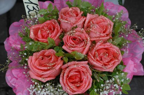 roses - Roses in Tallin Estonia