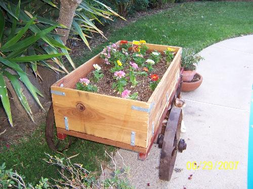 Flowers in the flower cart - Flower cart my husband made with zennias and lantana in it.