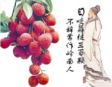 lychee - lychees and poets