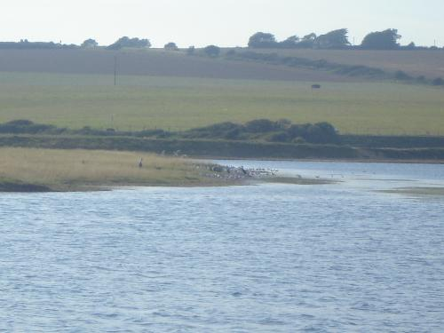 Seven Sisters Country Park - View across the River back to the start of the walk.