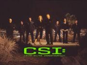 csi - Pic of all the CSI LAS Vegas