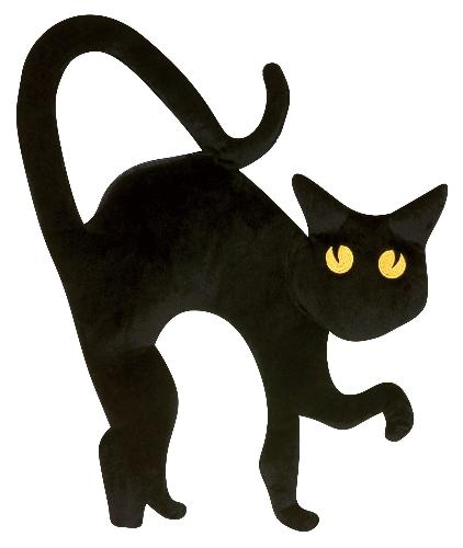 Are you superstitious ? - What superstition do you have? Do black cats scare you?