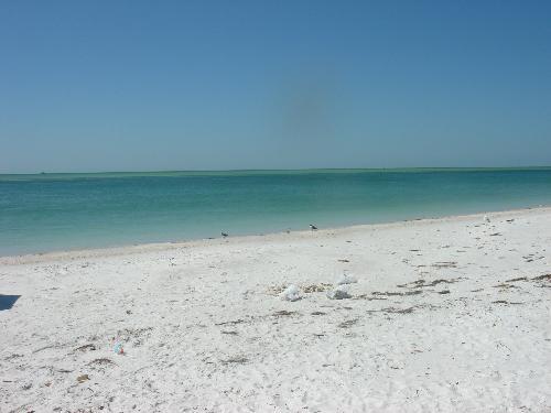 Fort DeSoto North Beach - This picture was taken at Fort DeSoto North Beach, just south of St. Pete Beach, in Florida.