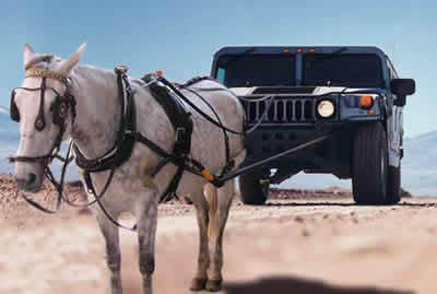 horse and hummer car - there is a horse and a hummer car