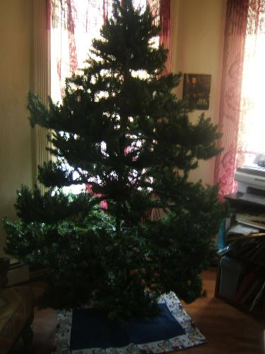 I wished for a tree...and got one!!! - my christmas tree