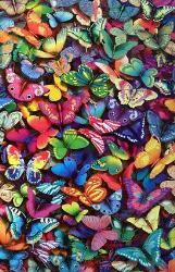 Butterflies - Rainbow Colored Butterflies